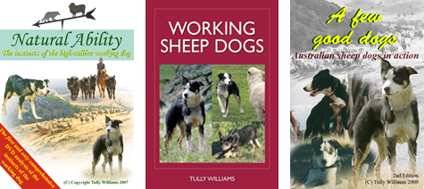 Sheepdog training books and DVD's for sale