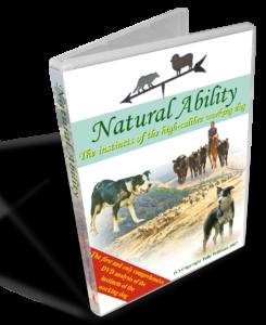 Natural Ability Sheepdog Instincts DVD